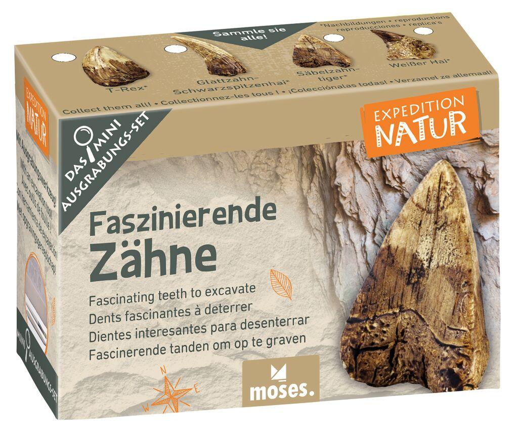 Expedition Natur Mini-Ausgrabungsset Faszinierende Zähne