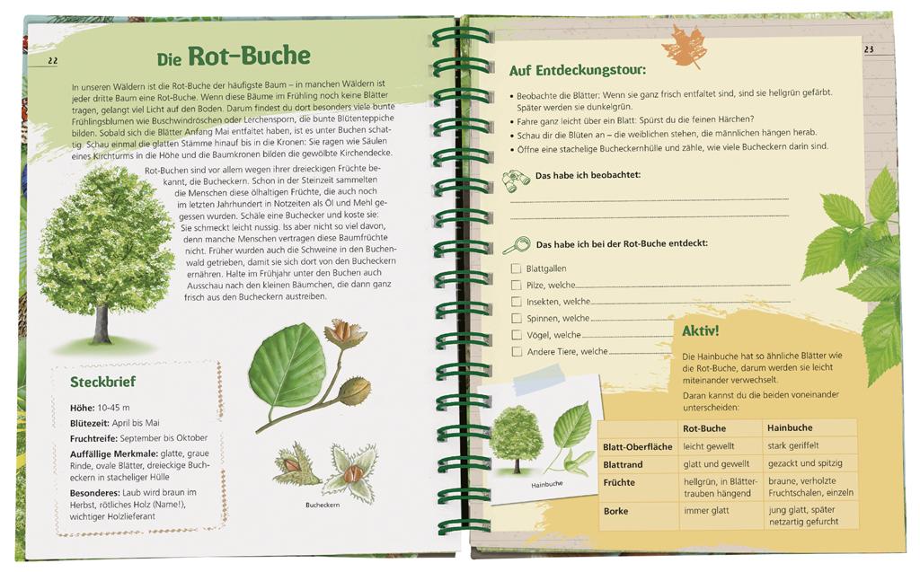 Expedition Natur - Das Wald-Forscherbuch