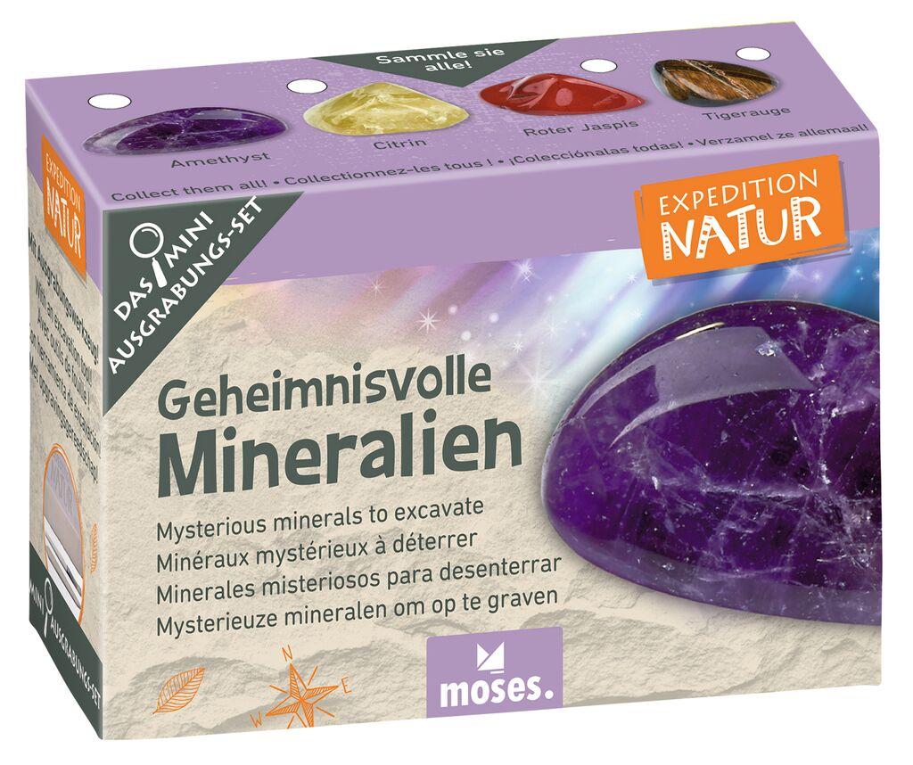 Expedition Natur Mini-Ausgrabungsset Geheimnisvolle Mineralien