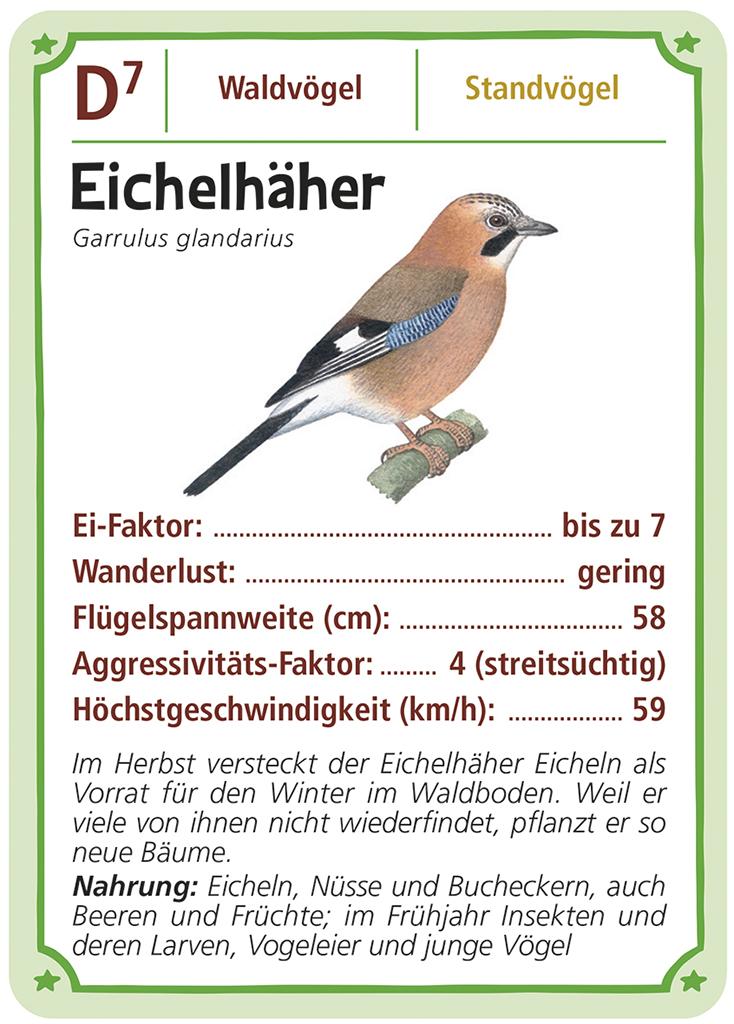 Expedition Natur Trumpf-Quartett Vögel