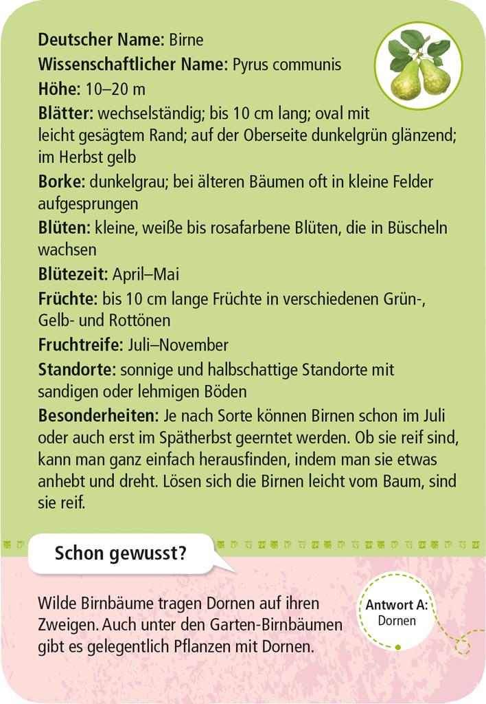 Expedition Natur - 50 heimische Garten- & Feldpflanzen