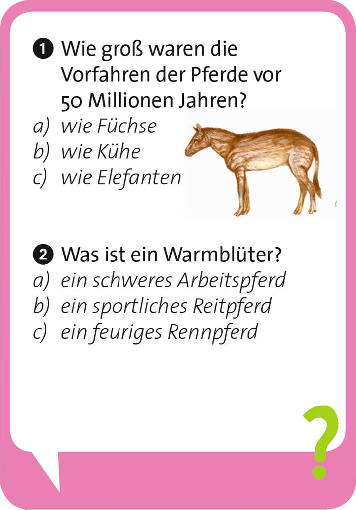 Pocket Quiz junior - Pferde