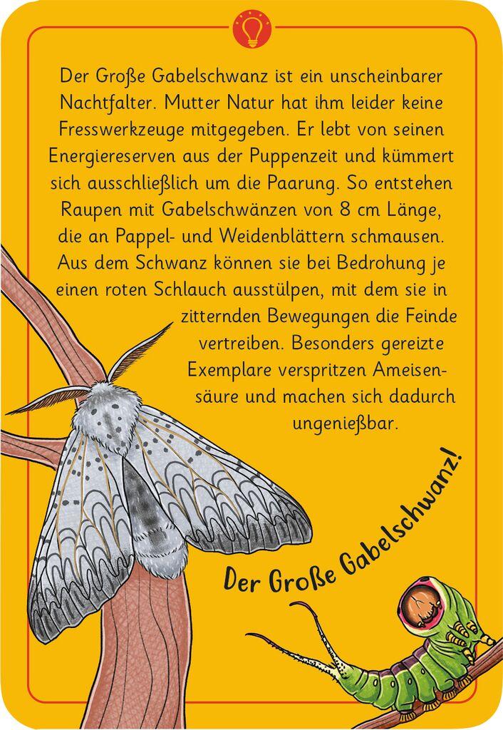 Expedition Natur - 50 wundersame Tierrätsel: Insekten