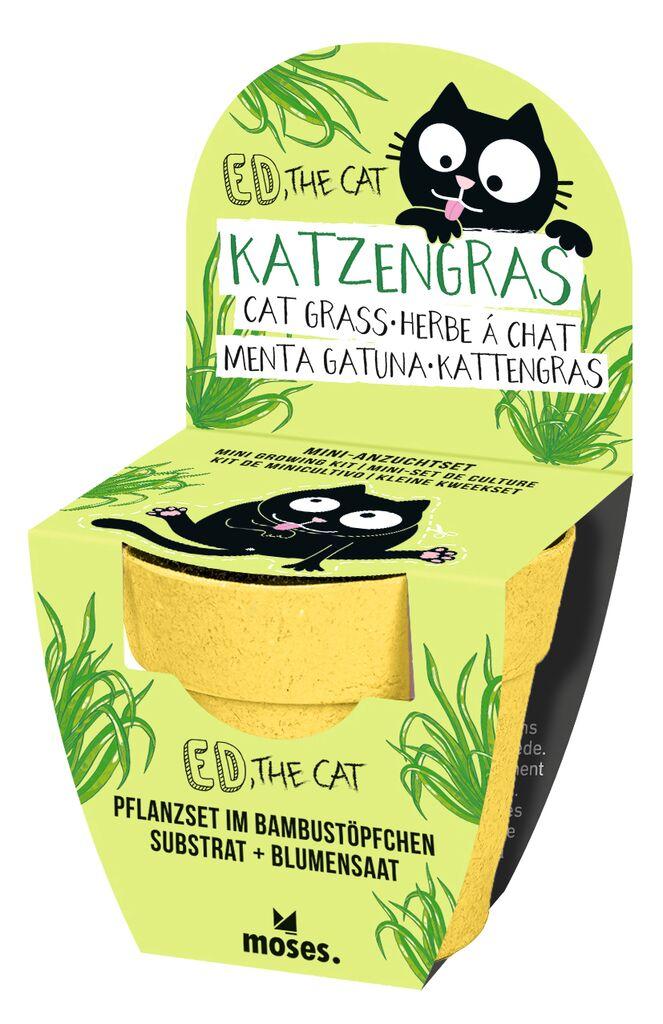 Ed, the Cat Mini-Anzuchtset Katzengras