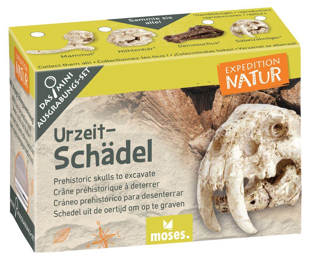 Expedition Natur Mini-Ausgrabungsset Urzeitschädel