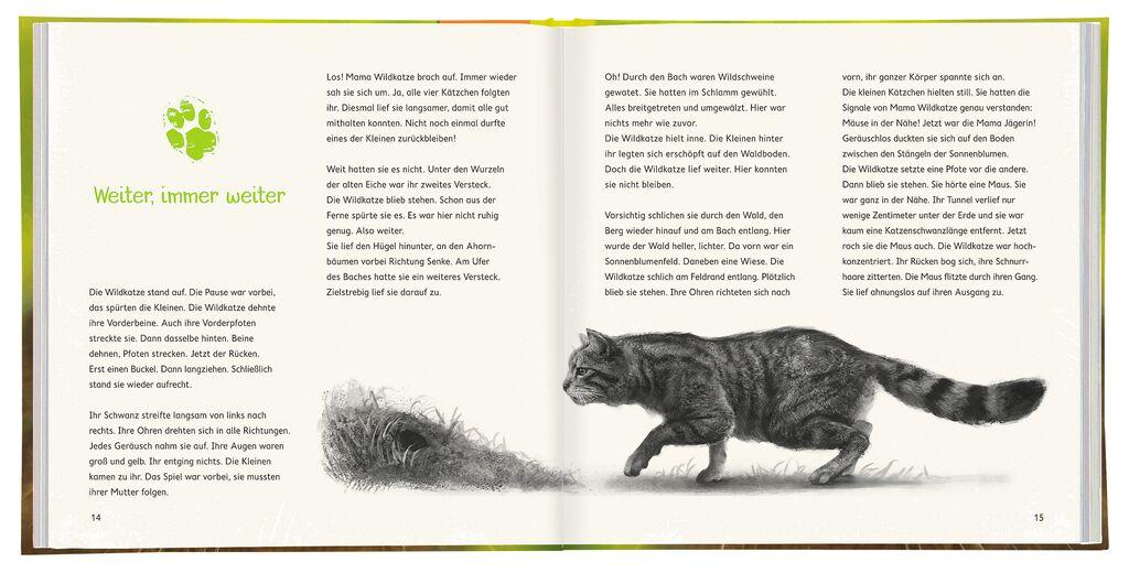 WILD! Die Wildkatze